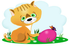 Kitten and an easter egg Royalty Free Stock Images