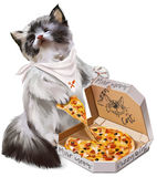Kitten eating pizza  watercolor painting. Kitten eating pizza and purrs with pleasure Royalty Free Stock Photos