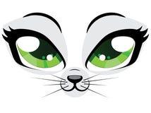 Kitten face Royalty Free Stock Image