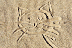 Kitten face on beach sand Royalty Free Stock Photography