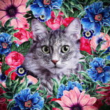 Kitten face framed floral wreath. Painted in summer brigh color Stock Photography