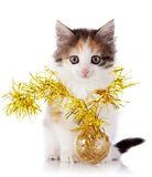 Kitten with a festive garland and a ball Royalty Free Stock Photography