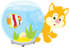 Kitten and fish Royalty Free Stock Photography