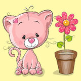 Kitten with flower Stock Images