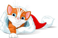 Kitten getting out from  Santa Hat. Cute red kitten getting out from  Santa Hat Stock Photo