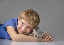 Kitten, joy in the house Stock Photo