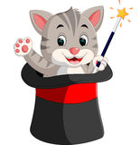 Kitten in a magician`s hat cartoon Royalty Free Stock Images