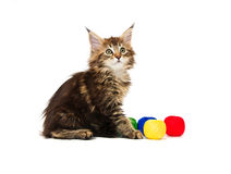 Kitten with multi-coloured balls of threads Stock Photo