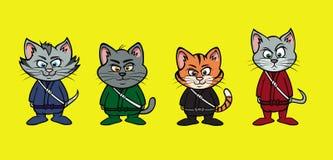 Kitten ninja lineup Royalty Free Stock Image
