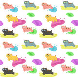 Kitten pattern Stock Photos