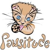 Kitten Pawsitude [VECTOR]. The cutest kitten ever licking its paw. Hand drawn word says Pawsitude How cute is this kitten?! You could do so much with this royalty free illustration