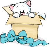 Kitten peeking out of a gift box Royalty Free Stock Photos