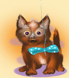 Kitten. The picture painted in the program photoshop Small kitten is looking at his toy stock illustration
