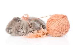 Kitten playing with a ball.  on white background Stock Images