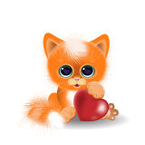 Kitten playing with a heart Royalty Free Stock Images