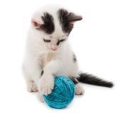 Kitten playing with yarn ball Stock Photo