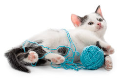 Kitten playing with yarn ball Royalty Free Stock Image