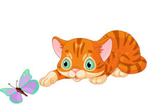 Kitten plays with the butterfly royalty free illustration