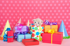 Kitten in present box with birthday party presents and hats. One month old buff orange tabby kitten peeking out of a birthday present in a pile of brightly Stock Photography