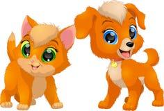 Kitten and puppy, friends Stock Photos