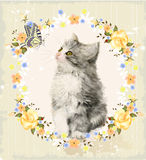 Kitten, roses and butterfly. Vintage card with fluffy kitten, roses and butterfly. Imitation of watercolor painting Royalty Free Stock Images