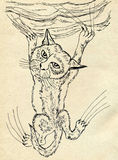 Kitten Scratching Sketch Stock Photo