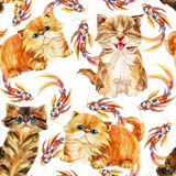 Kitten seamless pattern. Stock Image