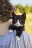Kitten on the shoulder Stock Images