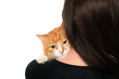Kitten on the shoulders of women Royalty Free Stock Photo