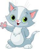 Kitten showing Royalty Free Stock Image