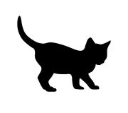 Kitten silhouette on white background. Kitten black silhouette on white background. Vector illustration Stock Photo