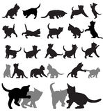 Kitten silhouettes Royalty Free Stock Photography