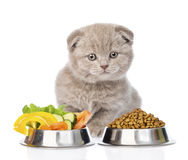 Kitten sitting with a bowls of dry cat food and vegetables. isolated. On white Stock Image
