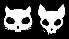 Kitten skulls Stock Photos
