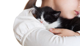 Kitten sleeping Royalty Free Stock Images