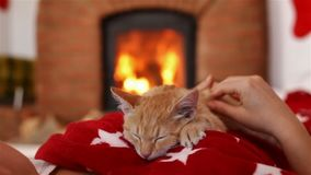 Kitten sleeping on woman chest in front of the fireplace - holidays season relaxation. Small kitten sleeping on woman chest in front of the fireplace - holidays stock video footage