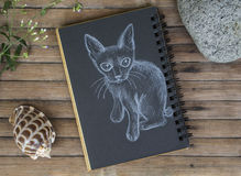 Kitten with small tail hand-drawn illustration. Cat by white chalk on black paper. Black paper notepad on wooden background. Vintage wooden table with artwork Royalty Free Stock Photo