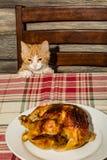Kitten Stealing Holiday Dinner royalty-vrije stock fotografie
