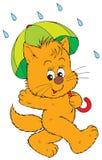 Kitten with umbrella (vector). Vector clip-art /children's illustration for your design