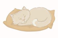 Kitten vector. Gray kitten sleeping on a pillow. Kitten vector. Gray kitten sleeping on a pillow Stock Photography