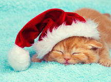 Kitten wearing Santa's hat Royalty Free Stock Images
