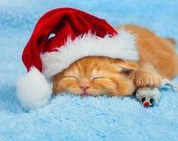 Kitten wearing Santa's hat Royalty Free Stock Photo