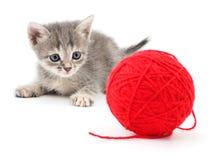 Free Kitten With Ball Of Yarn. Stock Photo - 86217360