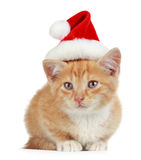 Kitten with xmas hat Royalty Free Stock Image