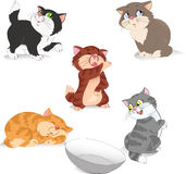 Kittens. A few funny cartoon kittens. Illustration in separate layers Royalty Free Stock Image