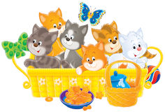 Kittens. Isolated clip-art and children's illustration for yours design, postcard, album, cover, scrapbook, etc Royalty Free Stock Photos