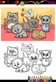 Kittens group cartoon coloring book Royalty Free Stock Image