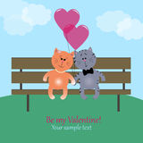 Kittens in love Stock Photography