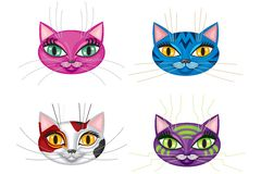 Kittens muzzles Stock Images