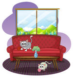 Kittens playing inside the house. Illustration of the kittens playing inside the house on a white background Royalty Free Stock Photo